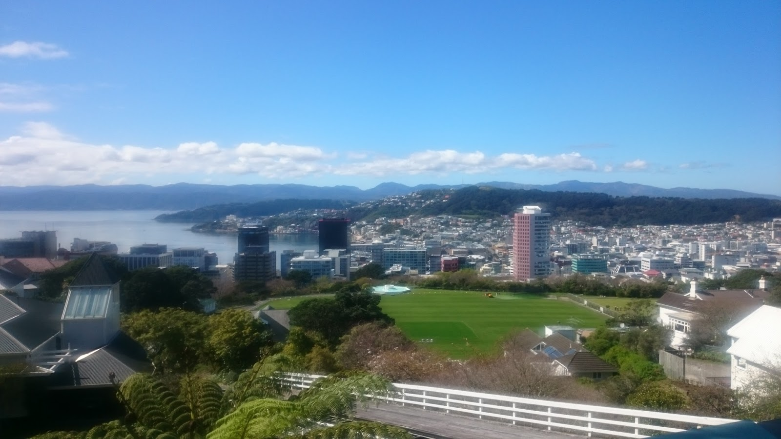 scenic-view-of-city-of-wellington-new-zealand