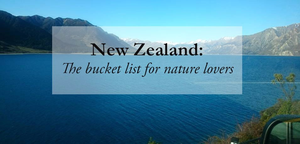 New Zealand: The bucket list for nature lovers