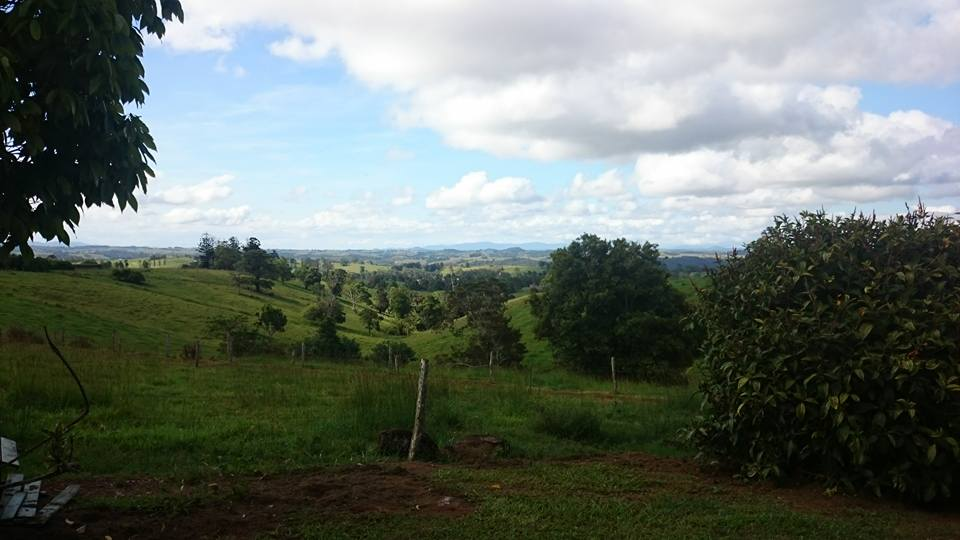 -view-over-green-fields-of-atherton-tablelands-australia