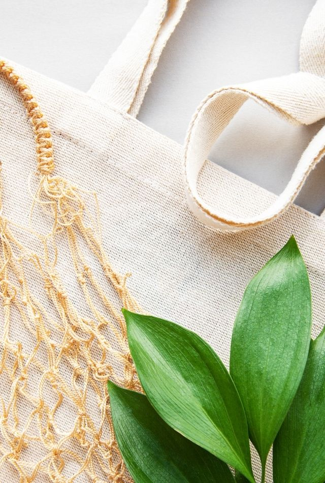 Eco-friendly tote bags and green leaves on floor