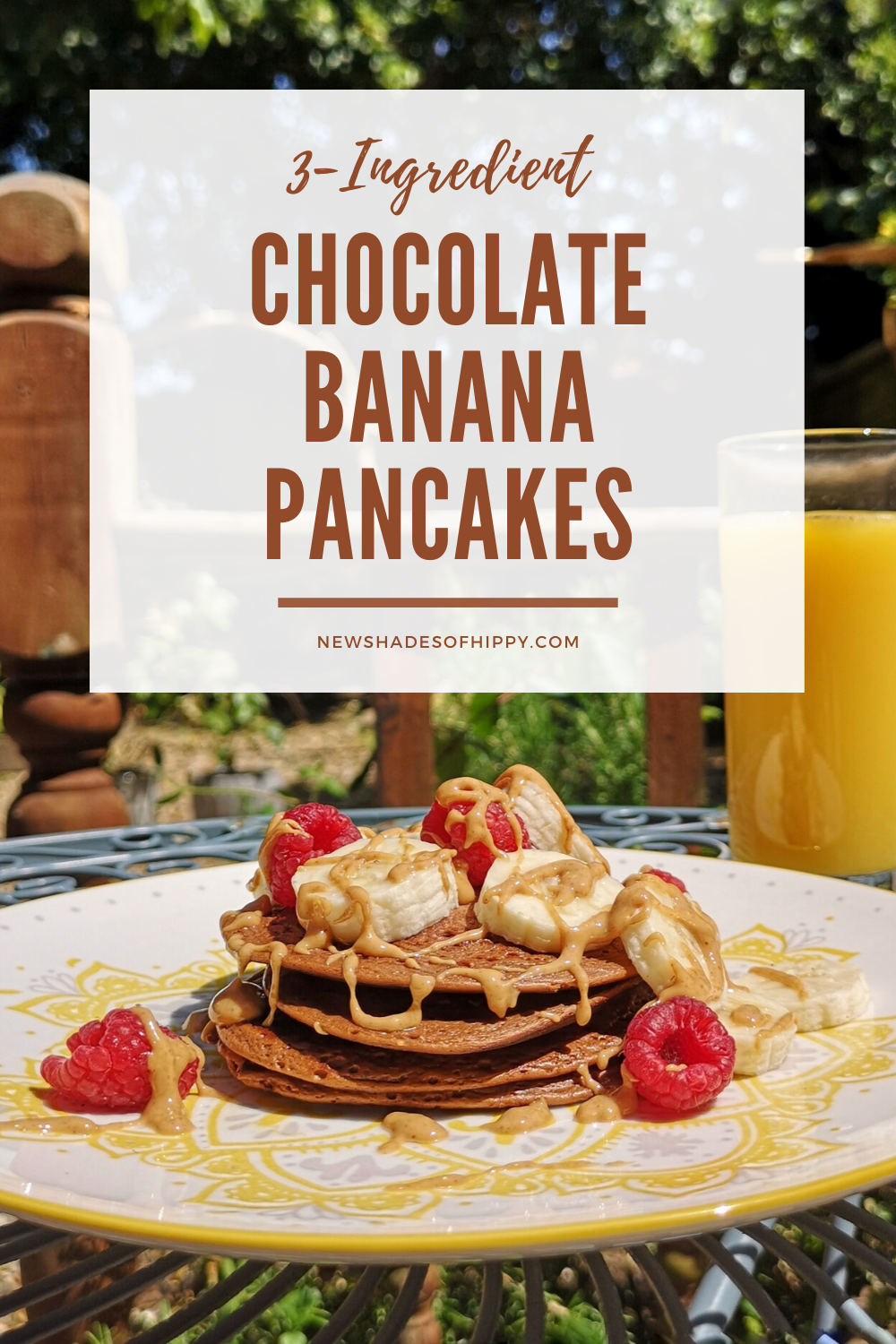 Pancakes on plate with raspberries and banana and text: 3 ingredient chocolate banana pancakes